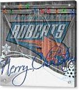 Charlotte Bobcats Acrylic Print by Joe Hamilton