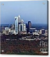 Charlotte Acrylic Print by Skip Willits