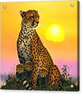 Cheetah And Cubs Acrylic Print by MGL Studio - Chris Hiett