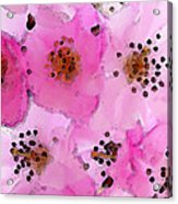 Cherry Blossoms - Flowers So Pink Acrylic Print by Sharon Cummings