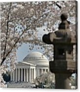 Cherry Blossoms With Jefferson Memorial - Washington Dc - 011326 Acrylic Print by DC Photographer