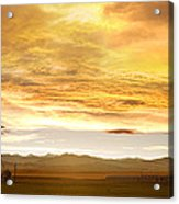 Chicken Farm Sunset 2 Acrylic Print by James BO  Insogna