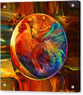 Chicken In The Round Acrylic Print by Robin Moline