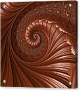 Chocolate  Acrylic Print by Heidi Smith