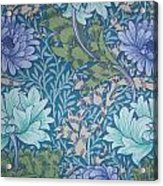 Chrysanthemums In Blue Acrylic Print by William Morris