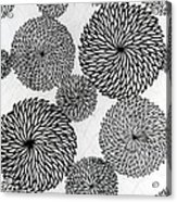 Chrysanthemums Acrylic Print by Japanese School