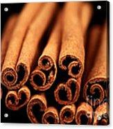Cinnamon Sticks Acrylic Print by John Rizzuto