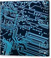 Circuit Board Acrylic Print by Carlos Caetano