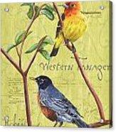 Citron Songbirds 2 Acrylic Print by Debbie DeWitt