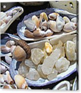 Coastal Beach Art Prints Agates Shells Acorn Acrylic Print by Baslee Troutman