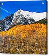 Colorado Rocky Mountain Independence Pass Autumn Panorama Acrylic Print by James BO  Insogna