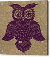 Colored Owl 1 Of 4  Acrylic Print by Kyle Wood
