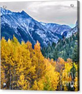 Colorful Crested Butte Colorado Acrylic Print by James BO  Insogna