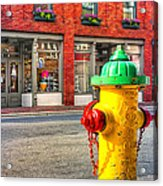 Colorful Fire Hydrant On The Streets Of Asheville Acrylic Print by Mark E Tisdale