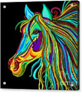 Colorful Horse Head 2 Acrylic Print by Nick Gustafson