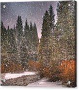 Colours Of Winter Acrylic Print by Juli Scalzi