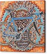Condor Baracchi Acrylic Print by Mark Howard Jones