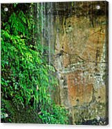 Cool And Refreshing Acrylic Print by Kaye Menner