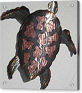 Copper Steel Turtle Wall Sculpture Acrylic Print by Robert Blackwell