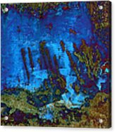 Coral Reef Acrylic Print by Tom Druin