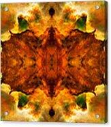 Cosmic Kaleidoscope 2  Acrylic Print by The  Vault - Jennifer Rondinelli Reilly