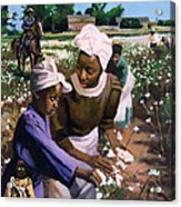 Cotton Pickers Acrylic Print by Colin Bootman