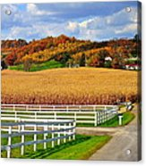 Country Lane Acrylic Print by Frozen in Time Fine Art Photography