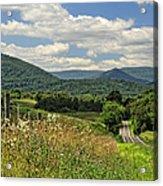 Country Roads Take Me Home Acrylic Print by Lara Ellis