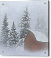 Country Winter Acrylic Print by Angie Vogel