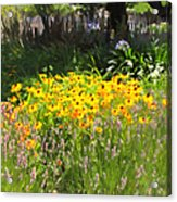 Countryside Cottage Garden 5d24560 Acrylic Print by Wingsdomain Art and Photography