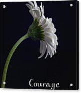 Courage Acrylic Print by Kim Andelkovic