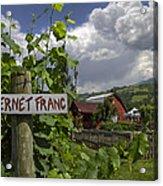Crane Creek Vineyard Acrylic Print by Debra and Dave Vanderlaan