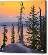 Crater Lake Trees Acrylic Print by Inge Johnsson