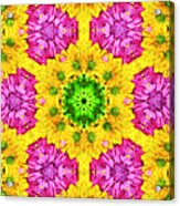 Crazy Daises - Spring Flowers - Bouquet - Gerber Daisy Wanna Be - Kaleidoscope 1 Acrylic Print by Andee Design