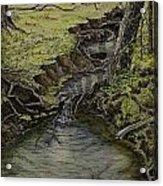 Creek  Acrylic Print by Janet Felts