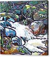 Creek Acrylic Print by Nadi Spencer