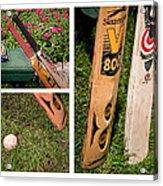 Cricket Series Acrylic Print by Tom Gari Gallery-Three-Photography