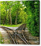 Crossing The Lines Acrylic Print by Joy Hardee