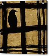 Crow And Golden Light Number 1 Acrylic Print by Carol Leigh