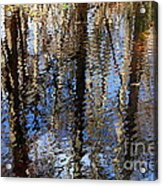 Cypress Reflection Nature Abstract Acrylic Print by Carol Groenen