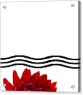 Dahlia Flower And Wavy Lines Triptych Canvas 1 - Red Acrylic Print by Natalie Kinnear