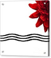 Dahlia Flower And Wavy Lines Triptych Canvas 3 - Red Acrylic Print by Natalie Kinnear