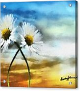 Daisies In Love Acrylic Print by Anthony Caruso