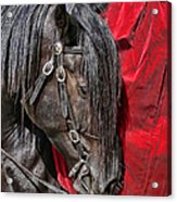 Dark Horse Against Red Dress Acrylic Print by Jennie Marie Schell