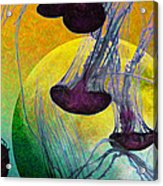 Dark Side Of The Moon 5d24939 Painterly M111 Long Acrylic Print by Wingsdomain Art and Photography