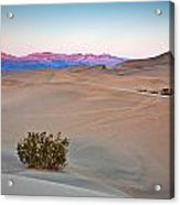 Dawn Dunes Acrylic Print by Peter Tellone