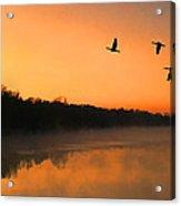 Dawn Patrol Acrylic Print by Steven Richardson