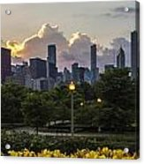 Day Lilys And Chicago Skyline In A 3 To 1 Aspect Ratio Acrylic Print by Sven Brogren