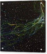 Death Throes Acrylic Print by Sean Connolly