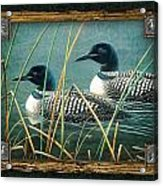 Deco Loons Acrylic Print by JQ Licensing